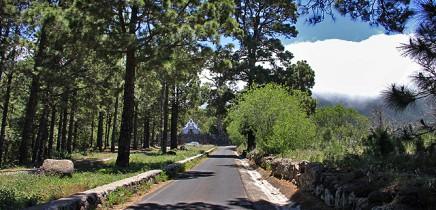las-cuevas-caminata-el-paso-virgen-del-pino-centro-visitantes-la-palma-113
