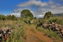 las-cuevas-caminata-el-paso-virgen-del-pino-centro-visitantes-la-palma-17