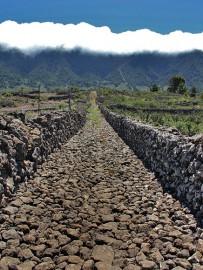 las-cuevas-caminata-el-paso-virgen-del-pino-centro-visitantes-la-palma-65