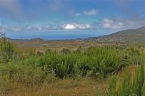 las-cuevas-caminata-el-paso-virgen-del-pino-centro-visitantes-la-palma-99