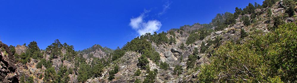 Flugemissionen: Klimawandel und Flugreisen - La Palma Travel
