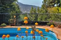 villa-torres-ferienhaus-pool-38