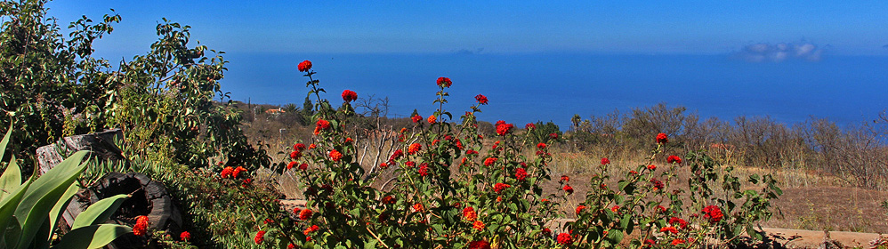 Casa Juli - Ferienhaus mit Pool in Puntagorda | La Palma Travel