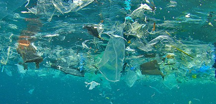 marine-litter-www2padicom