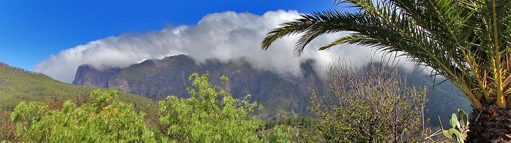 Casa Las Tortugas - Ferienhaus - El Paso | La Palma Travel