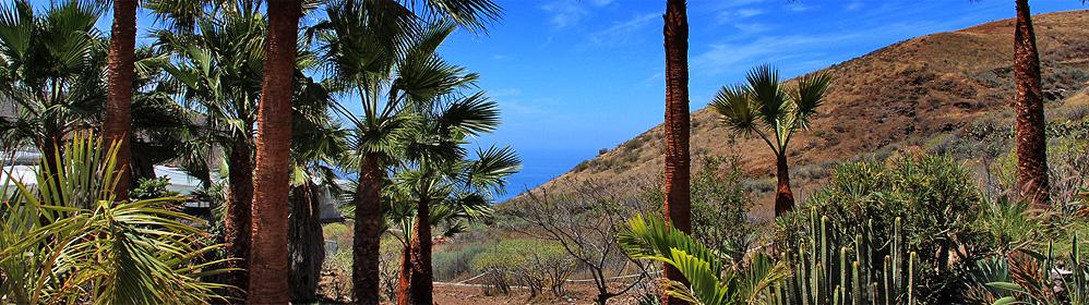 Casa Montaña Abajo - Ferienhaus mit Pool, Internet - La Laguna | La Palma Travel