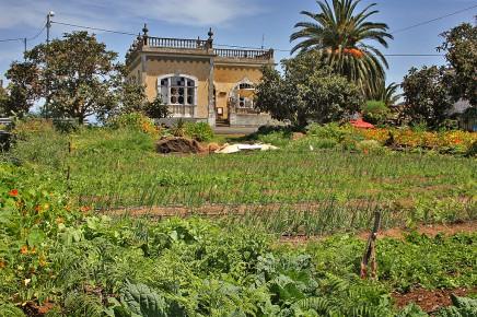 Casa Amarilla Bio Obst Und Gem Se Direktverkauf Bre A