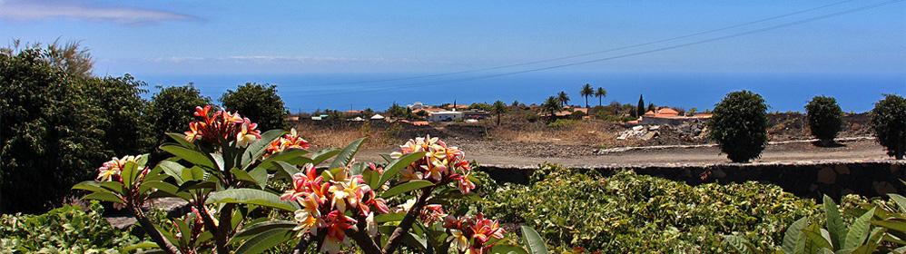 Casa Cueva de las Palomas - Ferienhaus mit Internet und Meerblick | La Palma Travel