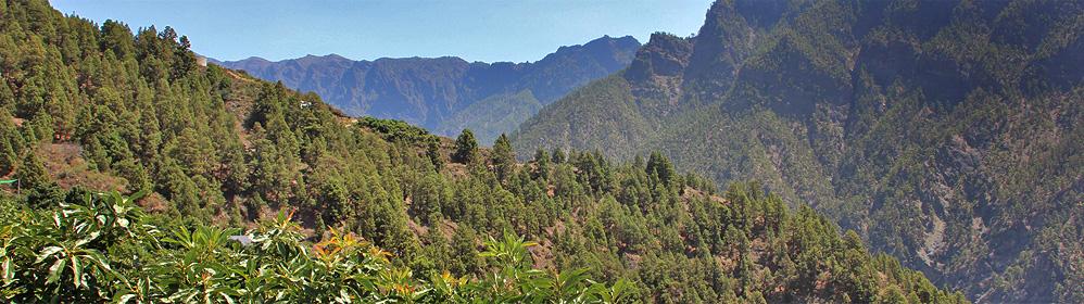 La Hacienda - Ferienhaus, Caldera de Taburiente | La Palma Travel