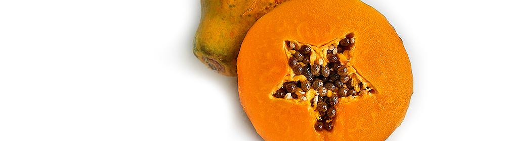 """papaya""  - Carica papaya"