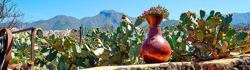 Casita Las Piedras - Ferienhaus mit Internet im Aridanetal | La Palma Travel