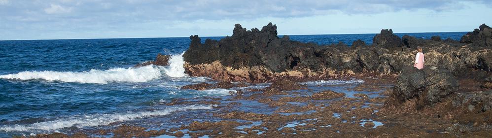 La Cangrejera - Ferienwohnung am Meer | La Palma Travel