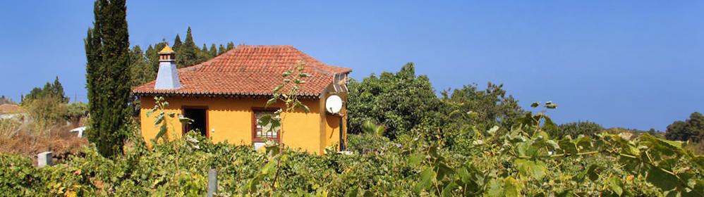 Casa Federico - Puntagorda - La Palma