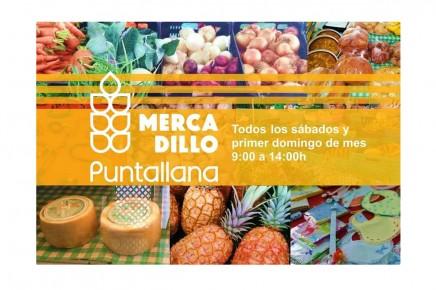 mercadillo-puntallana-la-palma-productos-locales
