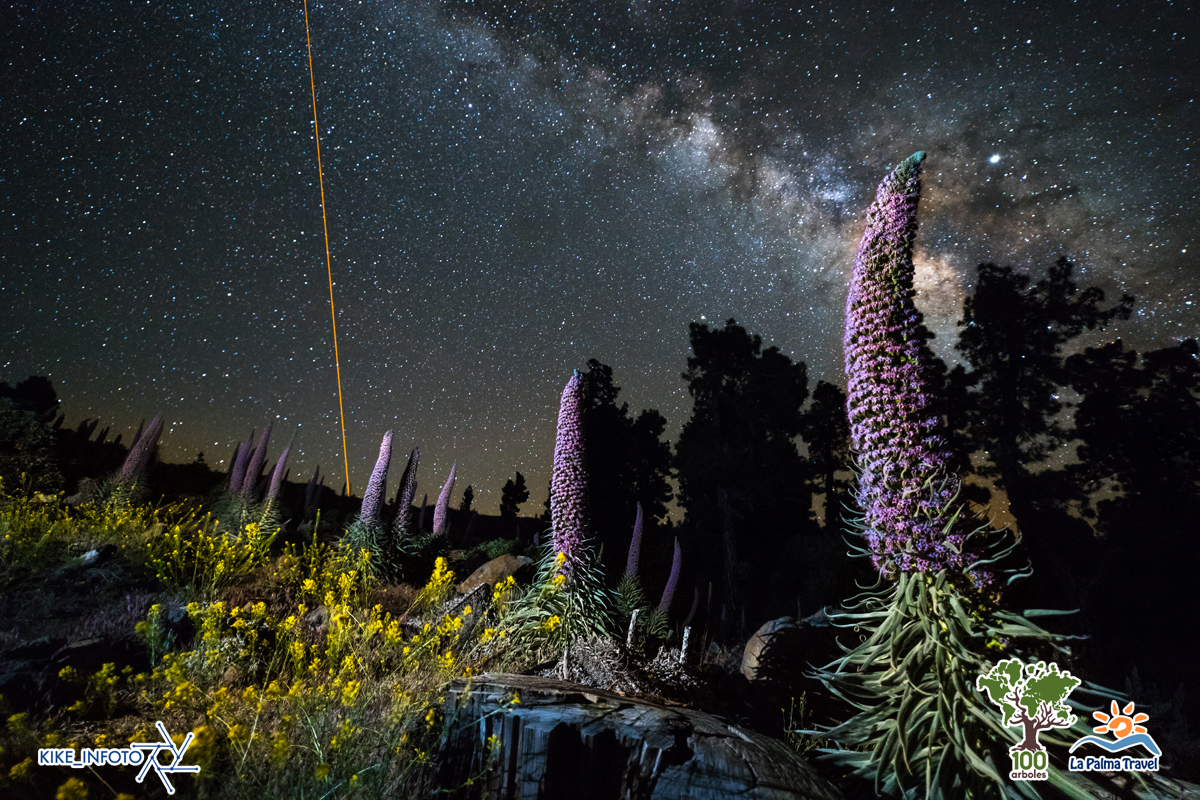 kike-navarro-astrofotografie-astronomie-Tajinastes-con-Oris-la-palma