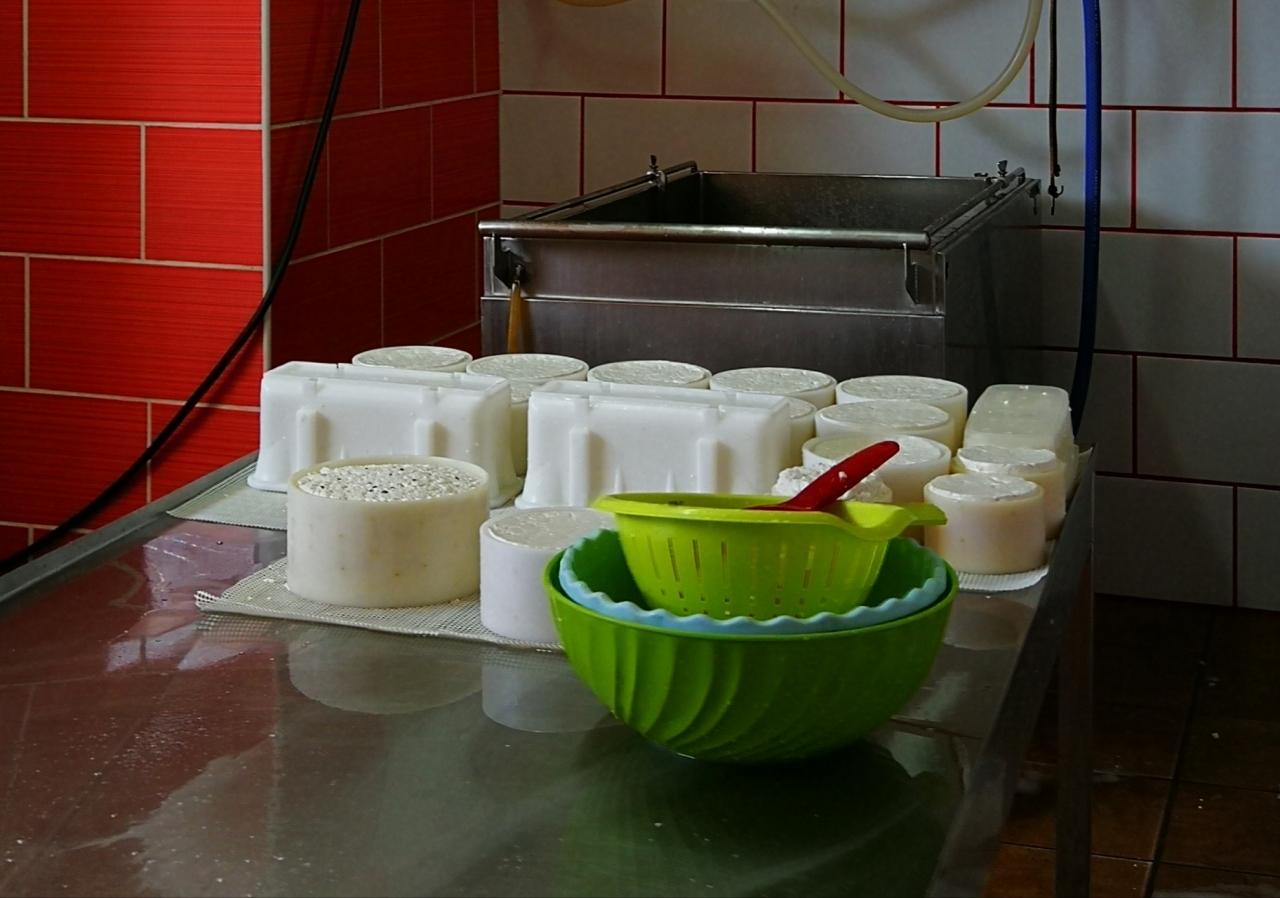 querseria-los-tumbitos-brenda-rodriguez-kaeseherstellung